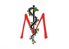 Dr. Marius Moucka - Arzt für Allgemeinmedizin, Pflanzenheilkunde, Ernährungsmedizin in Krems