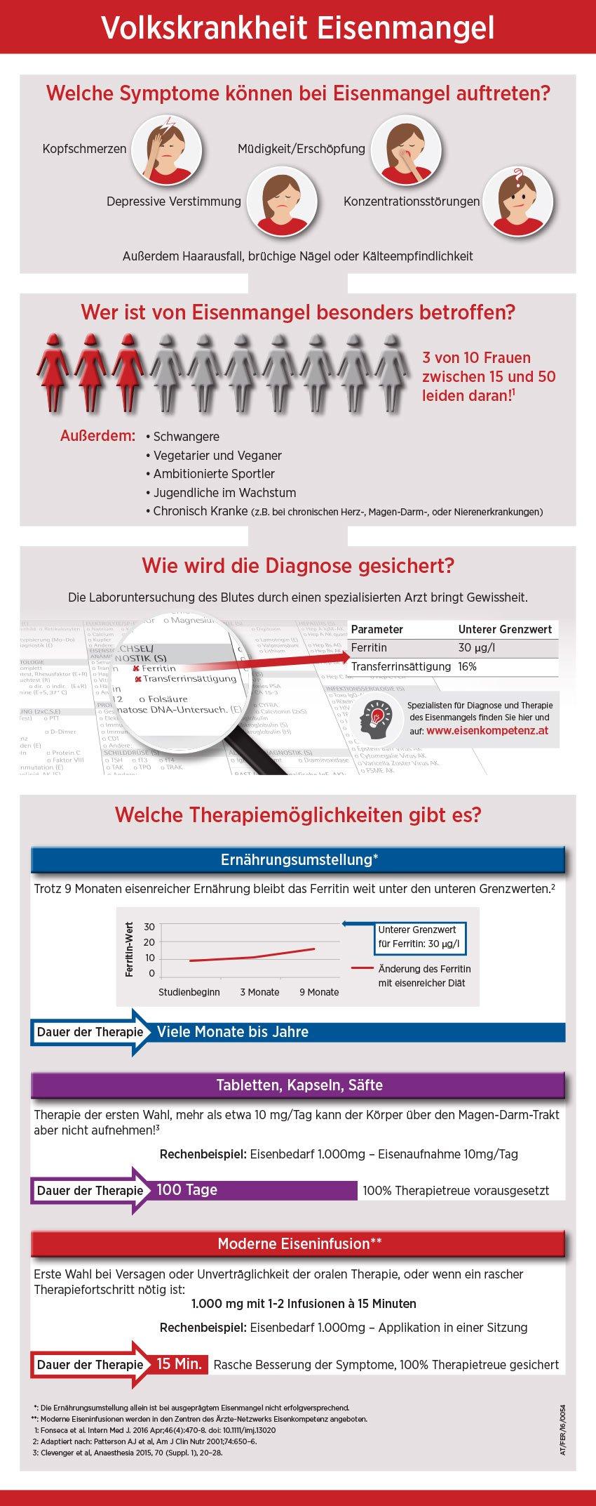 Eisencheck_Infografik_RZ